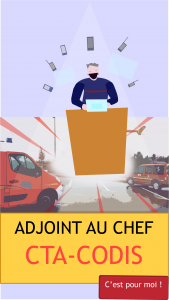 poste adjoint chef CTA-CODIS