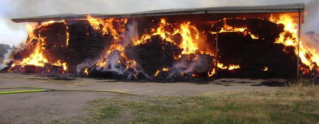 Date: 18 / 07 / 2015 | 07:37 Commune: LD Le Rançut | PERIGNY Type de Sinistre: Feu de bâtiment agricole  A 07h37, le CTA reçoit une demande de […]