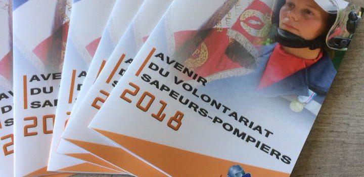 RAPPORT – Avenir du volontariat sapeurs-pompiers